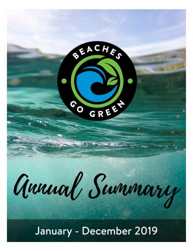 Annual Summary 2019 Cover