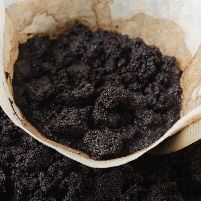 Coffee Grounds and Paper Filters
